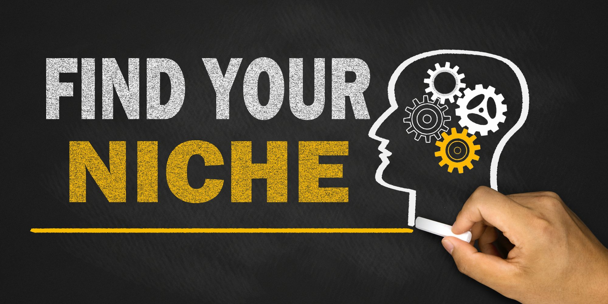 find your best niche market